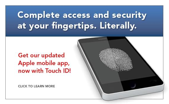 TouchID_web1